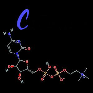 citicoline